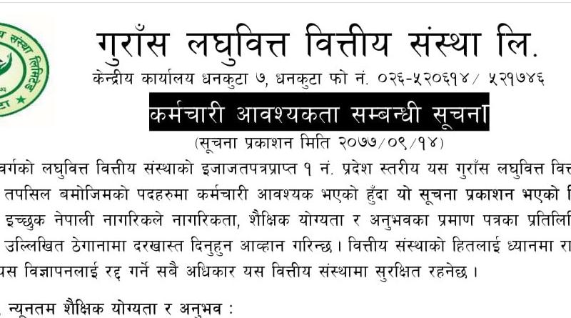 Gurans Laghubitta Bittiya Sanstha Limited Vacancy